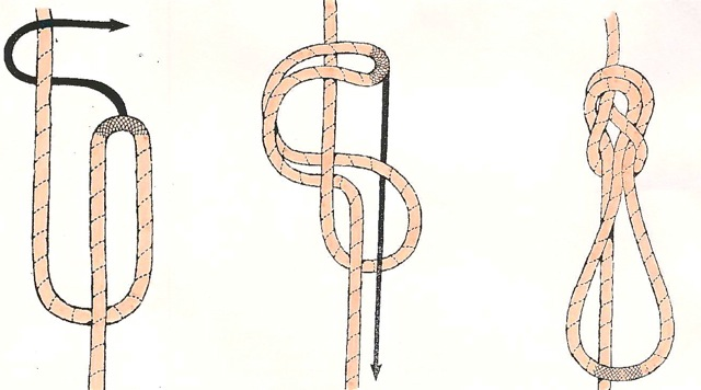 Inline figure eight knot
