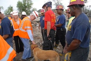 USAR Disaster Search