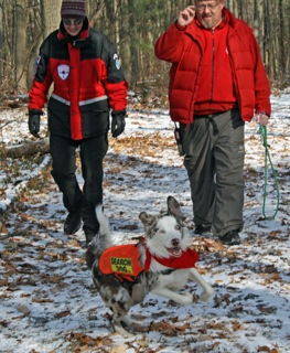 K9 Search and Rescue training